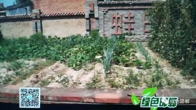 邱县新鲜庄:红色文化印心田 打造新型村文化
