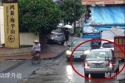 司机斑马线上撞翻老太!司机竟不用负责!