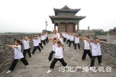 """邯郸:太极拳""""武""""动暑假"""