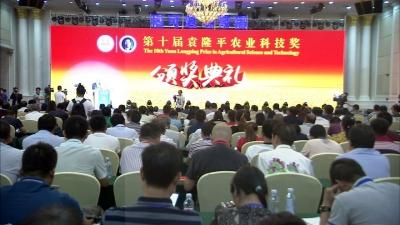 """邯郸""""农民专家""""宋福如获第十届袁隆平农业科技奖"""