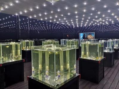 邯郸海洋世界,开启神秘海洋王国--海狮、珊瑚、美人鱼……等你来欣赏