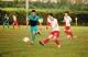 2018邯郸地区联盟杯足球赛开始报名