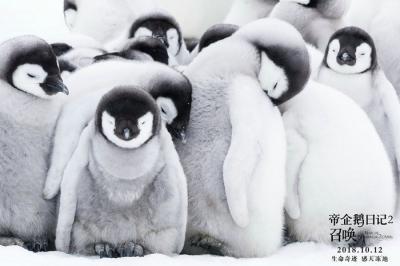 《帝企鹅日记2》发企鹅全家福海报