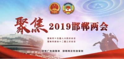 邯郸市第十五届人民代表大会第四次会议关于邯郸市2018年国民经济和社会发展计划执行情况与2019年国民经济和社会发展计划的决议(草案)