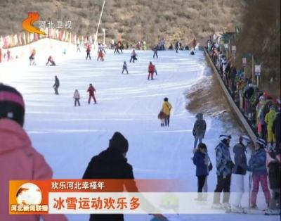 大年初四   河北卫视《河北新闻联播》播出峰峰药王谷冰雪运动欢乐多