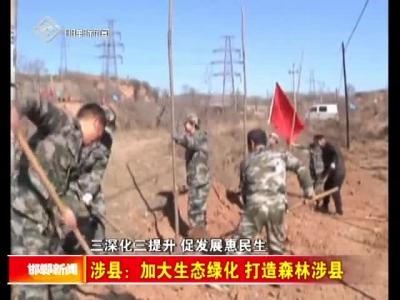 涉县:加大生态绿化 打造森林涉县