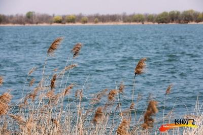【视频】我和春天有个约会——长城新媒体记者带您游览衡水湖