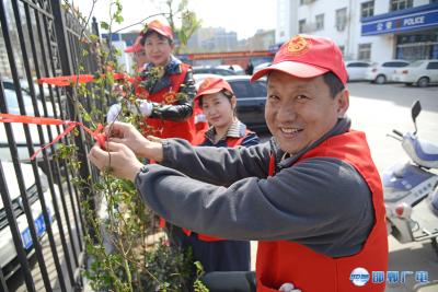 邯郸市联纺西街道:百人植蔷薇 鲜花扮靓城