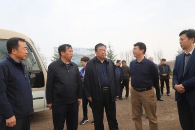 邯郸市委常委、常务副市长武金良到复兴区调研指导工作
