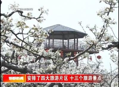 第十九届魏县梨花文化旅游活动开幕了