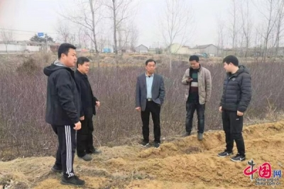 邯郸肥乡火热发展特色产业 两天种三万树苗
