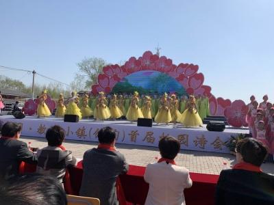 馆陶教育小镇首届桃花节暨桃园诗会开幕