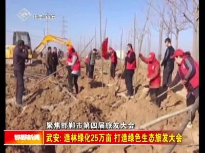 武安:造林绿化25万亩 打造绿色生态旅发大会