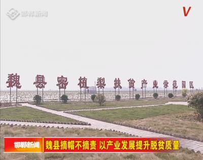邯广V视|魏县摘帽不摘责  以产业发展提升脱贫质量