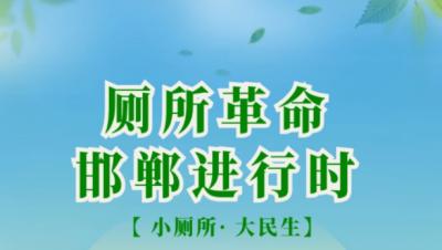 【图解】小厕所大民生 邯郸厕所革命进行时
