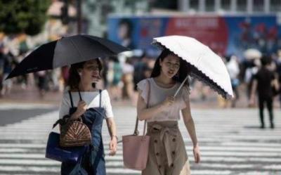 邯郸自1951年以来历史同期最高气温记录再次被刷新!