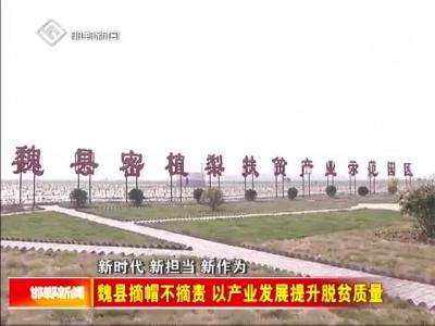 魏县摘帽不摘责 以产业发展提升脱贫质量