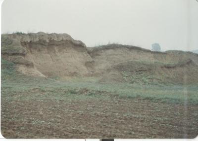 【农民日报】不治好盐碱地就不回家——中国农业大学扎根河北曲周县系列故事之一