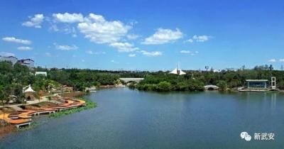 武安:300米见绿 500米见园 形成城市园林绿化新格局