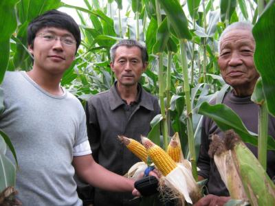 【中国农大的曲周故事】论文写在大地上最耀眼 服务深入田野里好风光