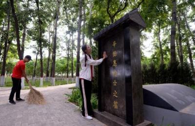 不治好盐碱地就不回家——中国农业大学扎根河北曲周县系列故事之一
