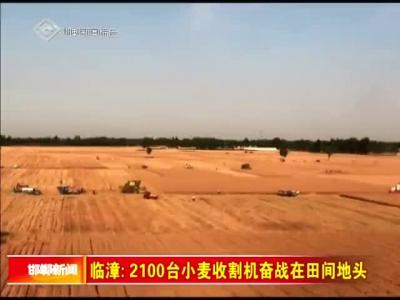 临漳:2100台小麦收割机奋战在田间地头