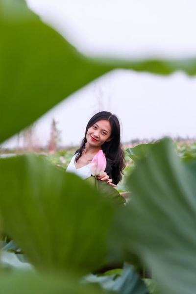 肥乡:遇见凤湖之夏