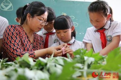 河北邯鄲:包粽子做香囊 品味民俗迎端午