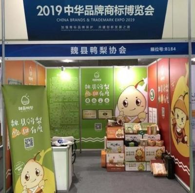 魏縣鴨梨走進2019中華品牌商標博覽會