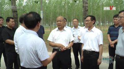 邯郸V视 |高宏志调研调度国有林场建设