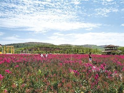 """生产、生活、生态——""""三生融合"""",乡村变身美丽""""大景区"""""""