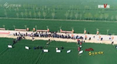 邯郸V视 |【中农大46载扎根泥土的无悔初心(五)】建设曲周绿色示范区 为全国树立样板