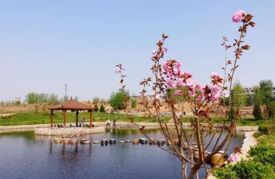 """河北峰峰打造""""湿地公园群落"""" 让百姓亲水更乐居"""