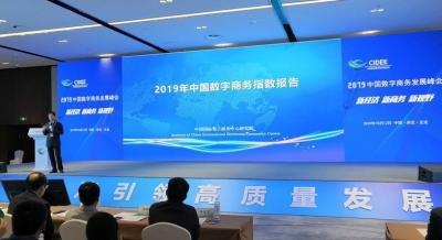 《中国数字商务发展指数报告》首次发布!河北位列11