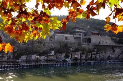 公示啦!邯郸这个区将成为省级园林城区,祝贺!
