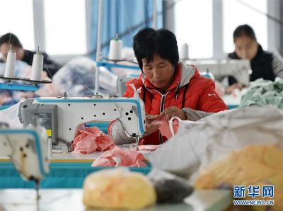 河北魏县:发展产业防止返贫