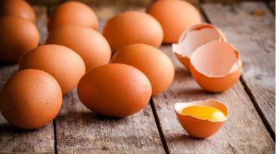 土鸡蛋比普通鸡蛋更有营养?误解!