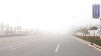 明早部分地区大雾 后天气温小幅下降