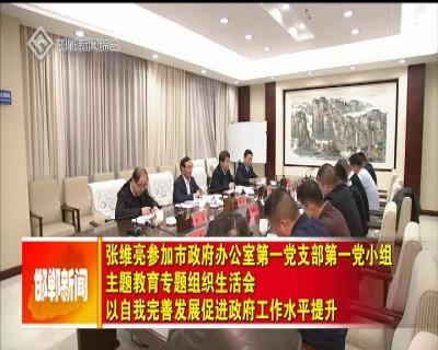 张维亮参加市政府办公室第一党支部第一党小组主题教育专题组织生活会 以自我完善发展促进政府工作水平提升