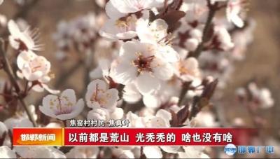 邯郸V视 【森林城市】我市大力推进邯西生态文明示范区建设  打造全省最大的城郊森林公园
