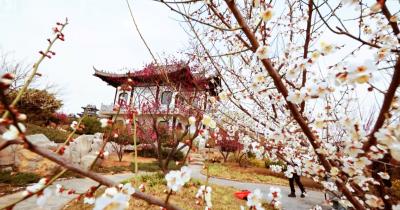 邯郸V视|春意渐浓 不如来邯郸这个地方赏花踏春