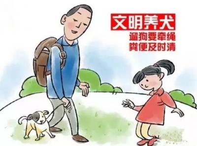 """邯郸市养犬管理条例文明养犬""""十二条"""""""