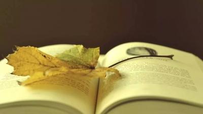 鼓起热情,做个读者就好