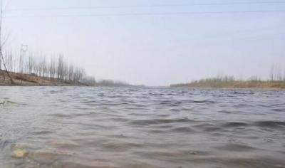 """邱县""""水网""""建设助效益生态双提升"""