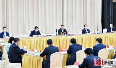 河北省代表团审议政府工作报告 审查计划报告和预算报告