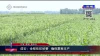 成安:全程技防统管 确保夏粮丰产