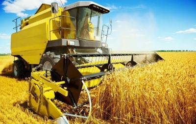 今年總產量力爭達747.8 億斤!河北9項措施保糧食生產安全