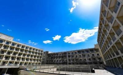 邯郸科技职业学院开始招生