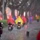 未來三天邯鄲雷雨頻繁