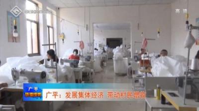 广平:发展集体经济 带动村民增收